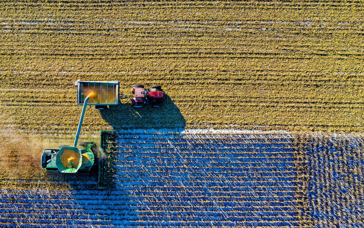 Aligning voices for a sustainable food system