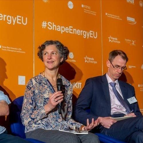 Designing future energy policies