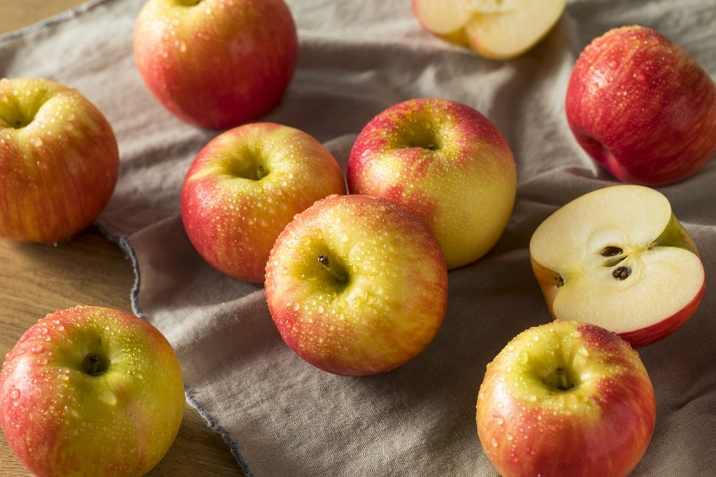 A 20th-century variety whose name gives it all away: it's sweet, it's crisp, it's a favorite for apple pie. The Honeycrisp apple is a seasonal fall fruit whose flavor intensifies in the oven and holds its texture. This apple is the official fruit of the US state of Minnesota, where a cold autumn makes a great time for baking a warm, delicious apple pie*.