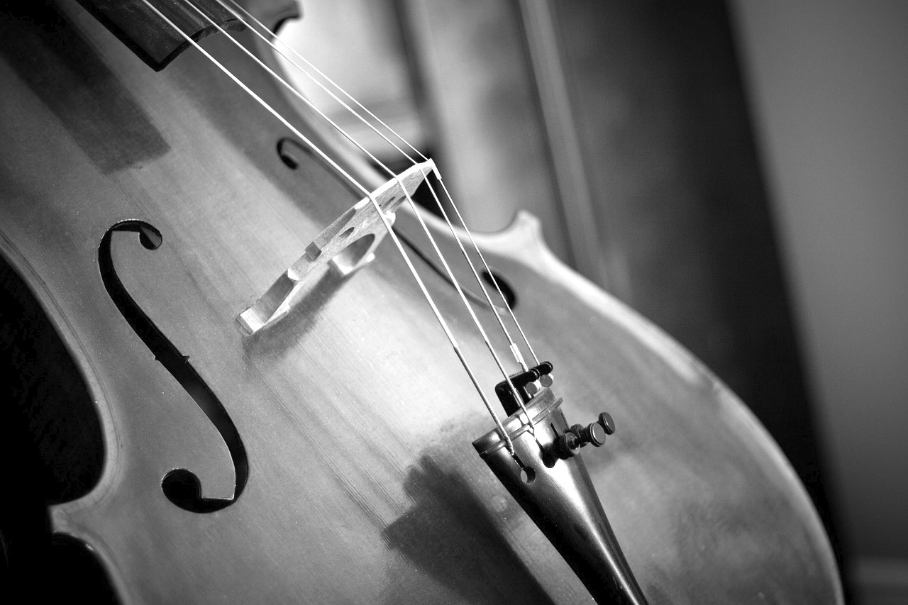 PBA Extra Violoncelle
