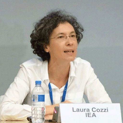 Picture of Laura Cozzi