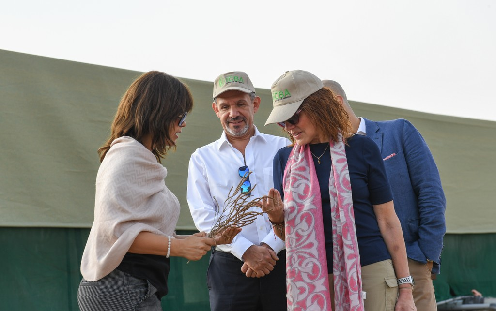 ICBA Director General, Ismahane Elouafi, showing the Food Forever Chair, HE Mercedes Aráoz, the potential of Salicornia for food security and resilience agriculture in marginalized environments. Photo credit: ICBA