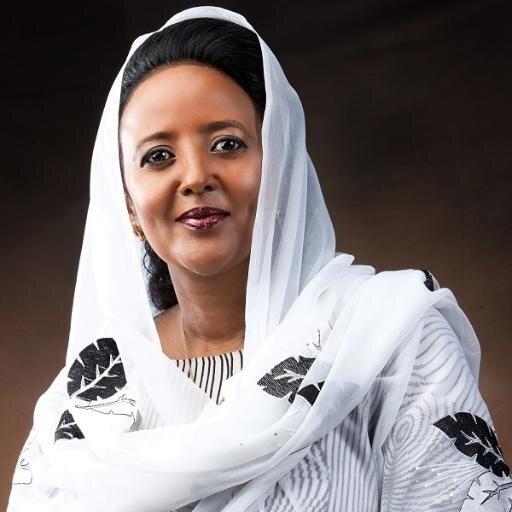 Photo of Amina C. Mohamed