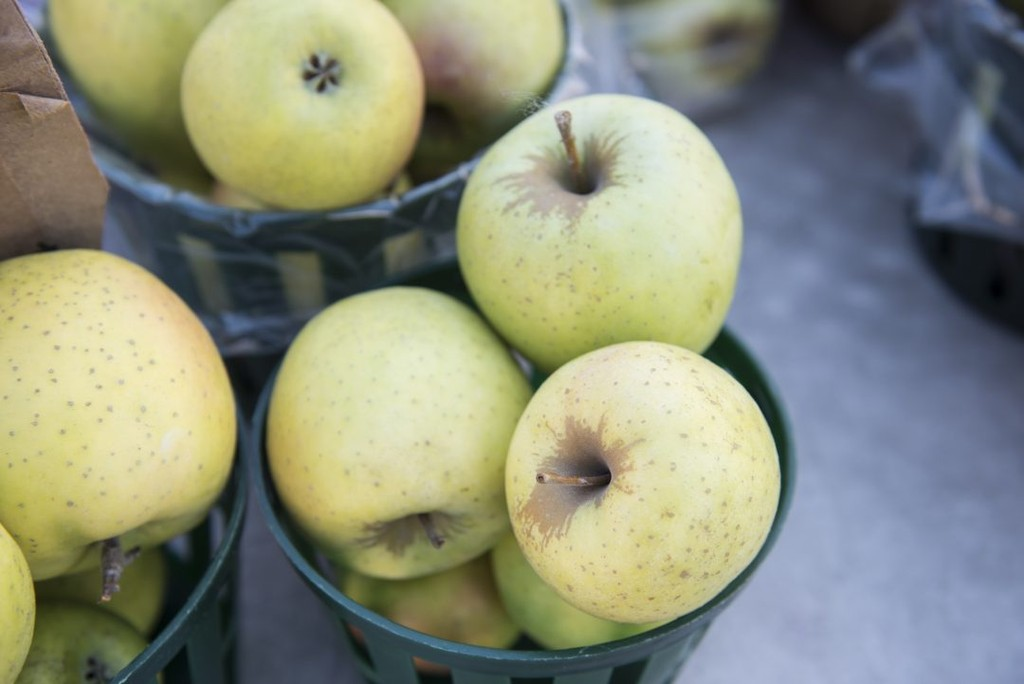 Also known as Mutsu apples, the Japanese Crispin variety is perfect for baking a mouthwatering pie. Its moderate sweetness is gentle and mixes well with your favorite spices without overpowering them. Throughout the baking process, Mutsu apples stay solid, resulting in a lovely, balanced apple pie*.