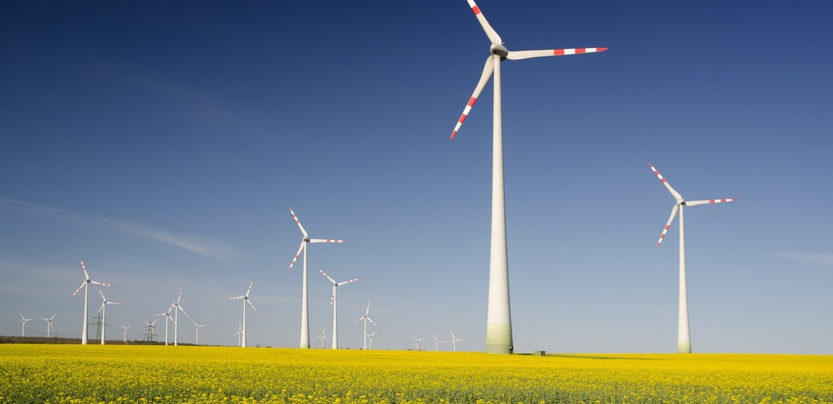 The European Green Deal: target 2050?